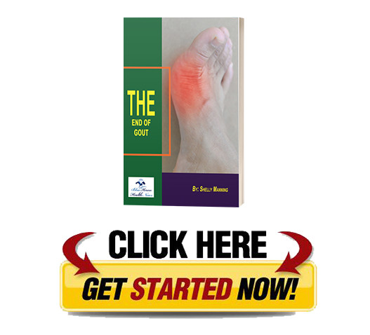 download End of Gout PDF