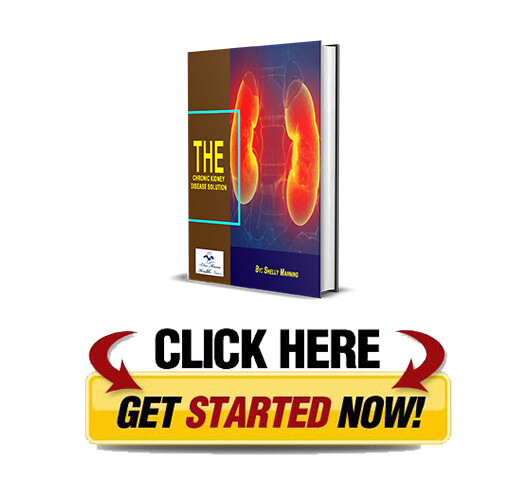 Download The Chronic Kidney Disease Solution PDF