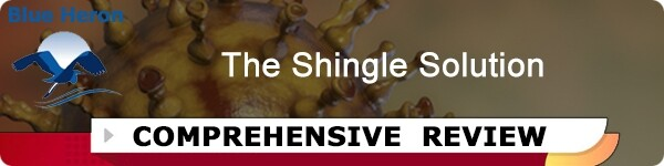 The Shingle Solution Review